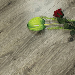 Wholesale hdf flooring: New Colors 8mm/12mm Laminate Flooring with SGS,CE