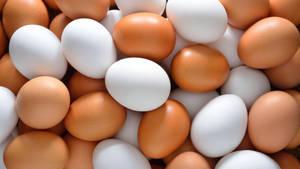 Wholesale natural crack: Fresh Eggs Exporters (Chicken Egg, Ostrich Eggs, Fish Egg, Quail Egg, Duck Egg,  )