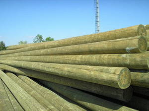 Wholesale transmission: Impregnated Wooden Poles
