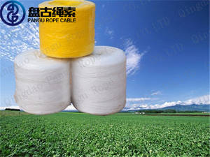 Wholesale transport freight solutions: Cheap ,Wear-resisting, PP Baler Twine