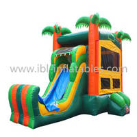 Sell Tropical Inflatable 5 In 1 Combo