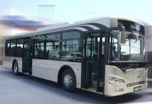 Wholesale City Bus: New Energy Bus