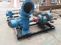 Flooding Special Water Pump  6