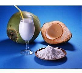 Wholesale jelly: Coconut Cream Powder
