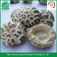 Dried Shiitake Mushrooms Chinese Black Forest Mushroom