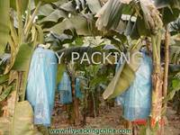 banana tree bag banana tree bag