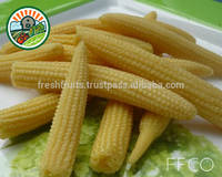 100% Natural Vegetable New IQF Babycorn for Export From Vietnam Best Deal 2015