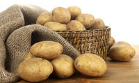 Fresh Potato Vegetable