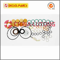 Sell Repair Kit 2 417 010 022  800717  Diesel ve pump, PE(S)8P S7100,S7800