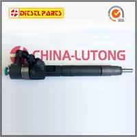 Sell Common Rail Diesel injector 6110700587  0445110011/012 for Mercedes-Benz
