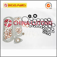 Sell Gasket Kits 2 417 010 002 for PE(S)6P..S..;->S1000