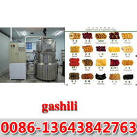 Vacuum Frying MACHINE0086-13643842763
