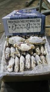 Wholesale king crab: Frozen Blue Swimming Crab,Seafood Crab Legs, King Crab, Frozen Whole Crab