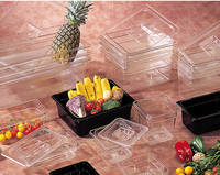 Polycarbonate Food container