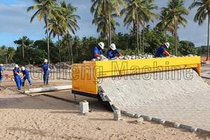 Wholesale Pavers: Road Brick Paving Machine