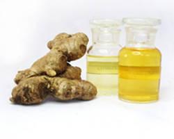 pickled ginger: Sell Ginger/ginger oil