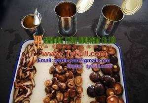 Wholesale canned shiitake mushroom: Canned Mushroom Canned Shiitake Mushrooms Canned Mushroom (Champignon) Canned Nameko