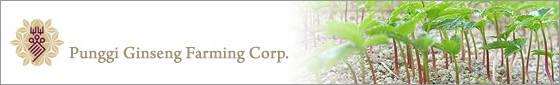 Punggi Ginseng Farming Corp.