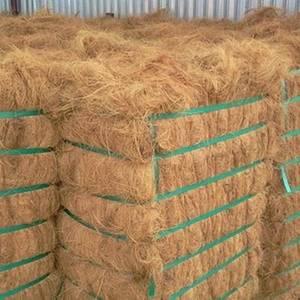 Wholesale coconut fiber: Quality Coconut Fiber / Fiber From Thailand