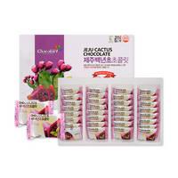 Jeju Cactus Chocolate 32ea (288g) Korea Fruit Chocolate Sweet Tasty Reliable Quality Natural Healthy