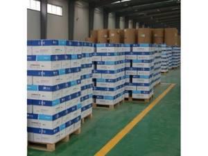 Wholesale photocopy paper: A4 80g Photocopy Paper
