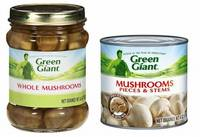 Canned Mushrooms Fresh and Quality Mushrooms.