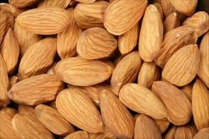 Wholesale nut cracker: Almonds, Pistachios, Walnut