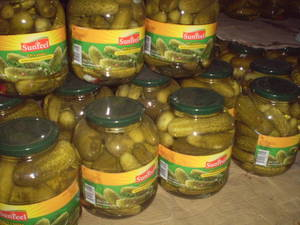 Wholesale Canned Vegetables: PICKLING CUCUMBER-Hannah 84974258938