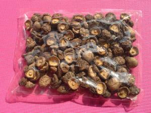 Wholesale frozen seaweed: Dried Mushrooms Whole/Slice/Flake/Powder