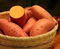 Wholesale wholesale sweet potato: Sweet Potatoes