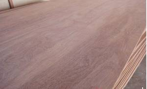 Wholesale import: FULL KERUING PLYWOOD- Best Price for Importer