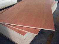 Sell melamine plywood