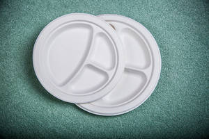 Wholesale dog biscuit: 10 Compostable Plates ROUND 3-COMPARTMENT 10 Inch Compostable Plates
