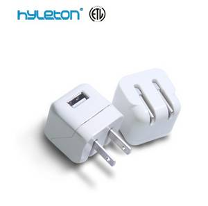 Wholesale Mobile Phone Chargers: 1a USB Charger for Ipad and Mobile Phones, 100-240v AC Input