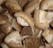 Frozen Oyster Mushroom/ Pleurotes/ Shiitake Mushroom