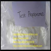 Testosterones Propionate 15262-86-9