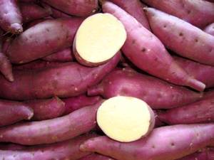 Wholesale Fresh Sweet Potatoes: Japanese Sweet Potato;