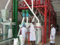 Sell grain mills,ugali maize flour machine,wheat flour mill machine