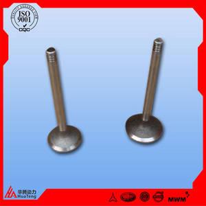 Wholesale valve: Deutz 1013 in Valve and EX Valve Part NO 0420 9111 0425 5883