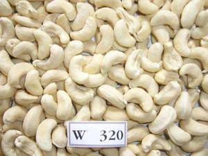 Wholesale pe bag: Roasted and Raw Cashew