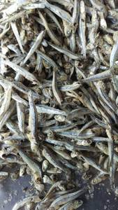 Wholesale snack: Dried Boiled Salted Anchovy,Fish Snacks with Pollock Sliced,Dried Anchovy