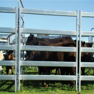 Wholesale rhs steel sizes: High Quality Cattle Panel Hot Sale in Australia