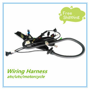 Wholesale Wiring Harness: Engine Wiring Harness Which Is Suitable for Two Wheel Motorcycle and Three Wheel Motorcycle.