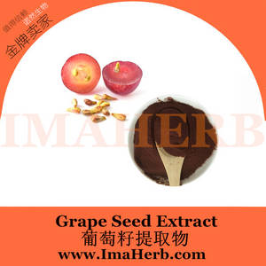 Wholesale grape seed extract: Natural Water Soluble Grape Seed Extract 95% Proanthocyanidins