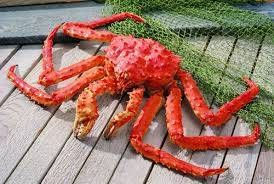 Wholesale king crab: Live Red Norwegian King Crab/Frozen King Crab Clusters