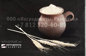 Wholesale lighting: Gluten Wheaten Dry Cargill