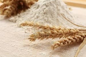 Wholesale Flour: Durum Wheat Semolina