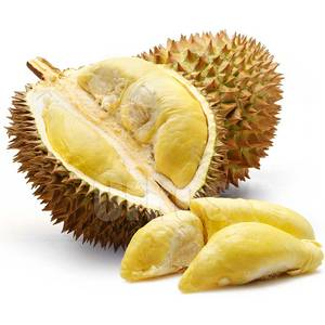 Wholesale durian: Fresh Durian