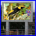 Sell led display screen and module