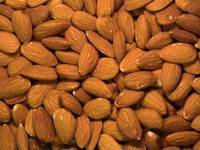 Wholesale crispy sesame: Raw and Processed Almonds Nuts and Carmel Almond,Raw Almond